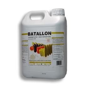 BATALLON