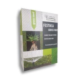 FESTUCA GRASS MAX